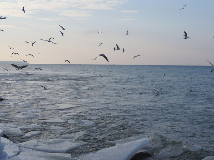 Балтийское море в феврале